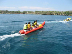 Inflatable Banana Boat for Sale / Water Banana Boat pictures & photos
