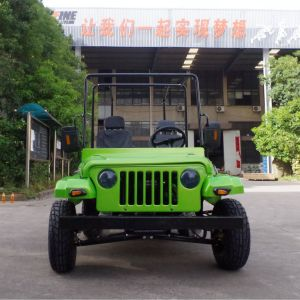 China 200cc Willys Mini Jeep/Racing Buggy/UTV with Ce pictures & photos
