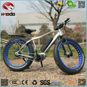 Manufacture 350W Fat Tire Electric Beach Bike LCD Display Bicycle with Pedal E-Bike pictures & photos