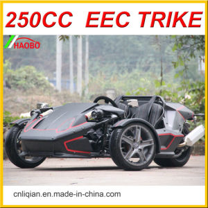 2017 New Style 250cc 3 Wheels Ztr Trike Roadster pictures & photos
