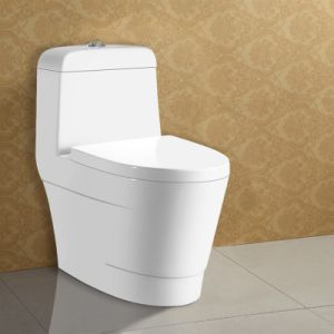 Commercial Water Saving One Piece Toilet pictures & photos