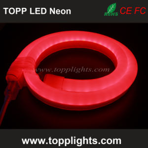 Waterproof Linear Lighting RGB LED Neon Flex Rope Light pictures & photos