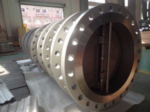 Dn1000-Pn40 Flanged Type Dual Plate Check Valve pictures & photos