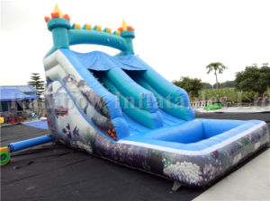 Commercial Inflatable Water Slide for Sale, Top Quality Inflatable Water Slide pictures & photos