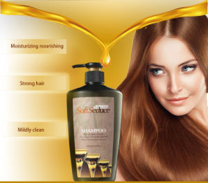 Softseduce Natural Argan Oil Shampoo and Conditioner pictures & photos