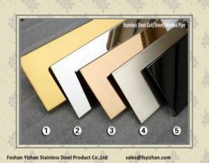 Stainless Steel Mirror Plate for Door pictures & photos