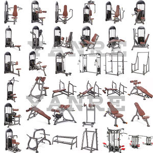 Gym Fitness Equipment Sports Machine Commercial Adjustable Roman Bench pictures & photos