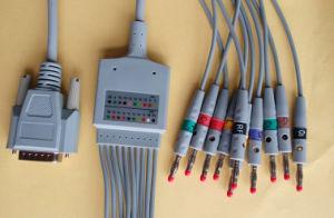 Nihon Kohden 15pin IEC Red Banana4.0 EKG/ECG Cable pictures & photos