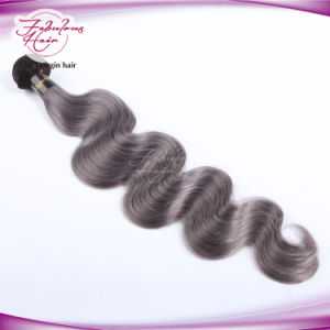Ombre Color Natural Brazilian Color 1b/Grey Human Hair pictures & photos