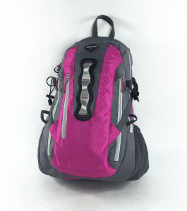 Good Quality Outdoor Travel Sport Backpack in Different Colors pictures & photos