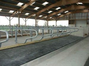 Horse Stall Rubber Mats / Cow Horse Stall Rubber Mats pictures & photos