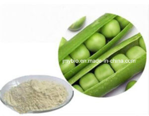 Hot Sell High Protein Non-GMO Pea Protein Powder 80% Wholesale pictures & photos