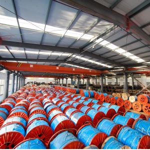 Linear Contact Lay Wire Ropes - 8X29fi pictures & photos