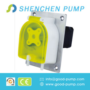 12V/24V DC Motor OEM Mini Peristaltic Pump pictures & photos