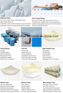 Visco Elastic Pattern and Press Fabric Style Mattress Toppers pictures & photos
