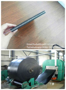 High Quality Oil Resistant Conveyor Belt Manufacturer and Rubber Conveyor Belt pictures & photos