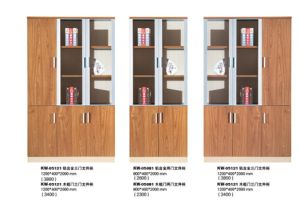Profession Office Using Document Cabinet Combination pictures & photos