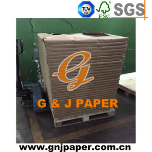 700*1000mm One Side Coated Duplex Board Grey Back for Sale pictures & photos