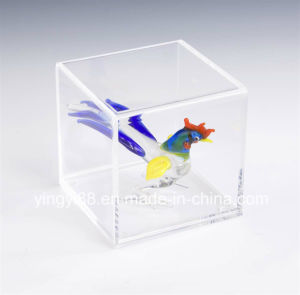 Factory Direct Sale Acrylic Basketball Display Cases pictures & photos