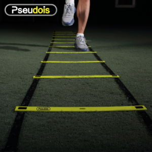 Agility Ladder for Training pictures & photos