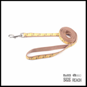 Wholesale Customised Best Woven Ribbon Nylon Pet Dog Walking Leash pictures & photos