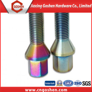 Auto Part Titanium Screws / Wheel Bolt pictures & photos