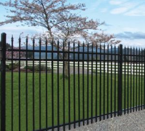 Galvanized Fence Mesh pictures & photos