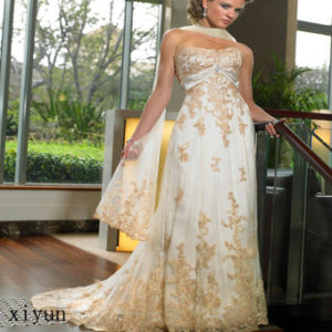 Prom Dress / Evening Dress / Fashion Dress (Ev-059)