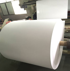 Polyethylene Coated Paper for One-Time-Use Cups pictures & photos