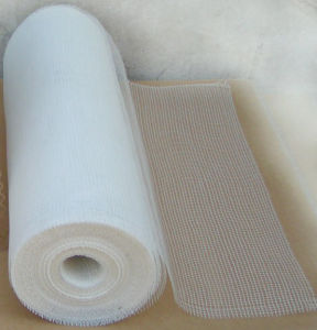 Fiber Glass Net pictures & photos