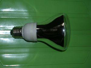 Reflect Lamp