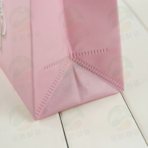 Non Woven Bag with Auto-Forming PS Coating Can Hold 20kg 30.30.11 (My-008) pictures & photos