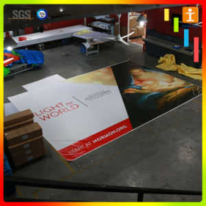 Digital Printing Outdoor Advertising PVC Flex Banner pictures & photos