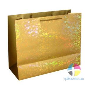 Paper Shopping Bags (PB-1010-1016)