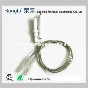 Ignition Electrode for Gas Cooker/Spark Plug for Oven/Oven Parts/Stove Parts/Electrode pictures & photos