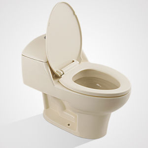 China Ceramic Hot Sale CSA Flush One Piece Toilet pictures & photos