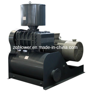 Tri-Lobe Air Cooling Roots Blower in Food Zg125 pictures & photos