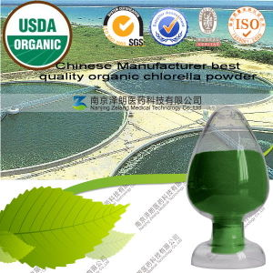 Chinese Manufacturer Best Quality Organic Chlorella Powder