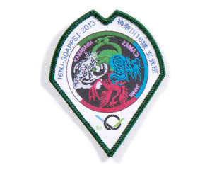 Printed Badges pictures & photos