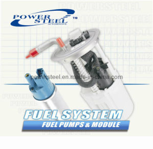 Fuel System (electric pump) for All American Car Parts pictures & photos