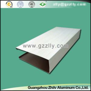 Artistic Pattern Aluminum Ceiling for Interior Decoration pictures & photos