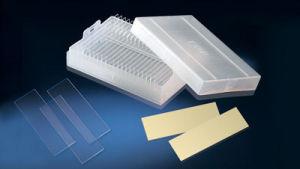 Prepared Glass Slides/Miro Slides/Microscope Slides/Slides pictures & photos