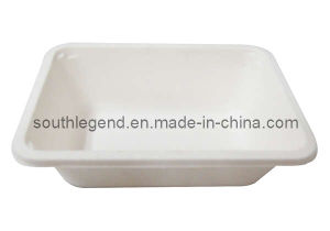 Lunch Box (SL-D-3016)