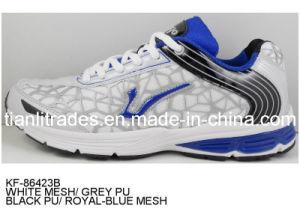 Men′s Sport Shoes. Footwear Supplier (TA33)