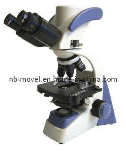 Digital Microscope (1.3mega pixel) pictures & photos