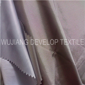 Nylon and Polyester Interweave Fabric for Jacket (DNT3101)