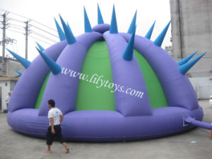 2011 New Inflatable Tent Advertise Party Promotion LED Tent