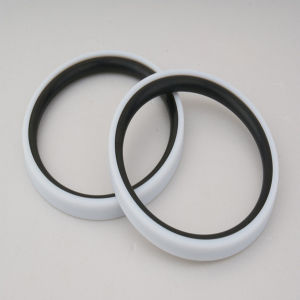 High Quality Glyd Rings for Piston/Rod pictures & photos
