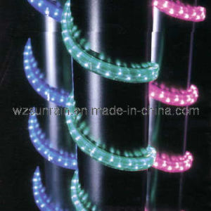 Rope Light (SRR-2W) pictures & photos