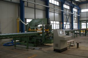PU Sandwich Panel Continuous Forming Machine pictures & photos